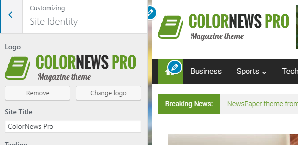 colornews-instruction-header-logo